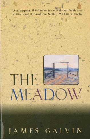 The Meadow - [Used]